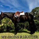 MY IRONS ARE HOTTER - Colt (Owner Breakoday Quarter Horses)